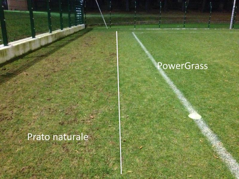 PowerGrass over winter